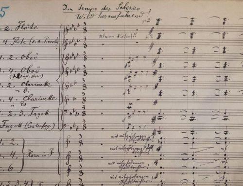 L'abécédaire d'Animozar – la lettre S : La symphonie