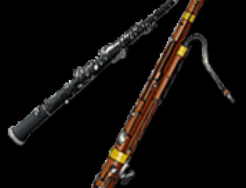le Hautbois, un instrument très délicat !
