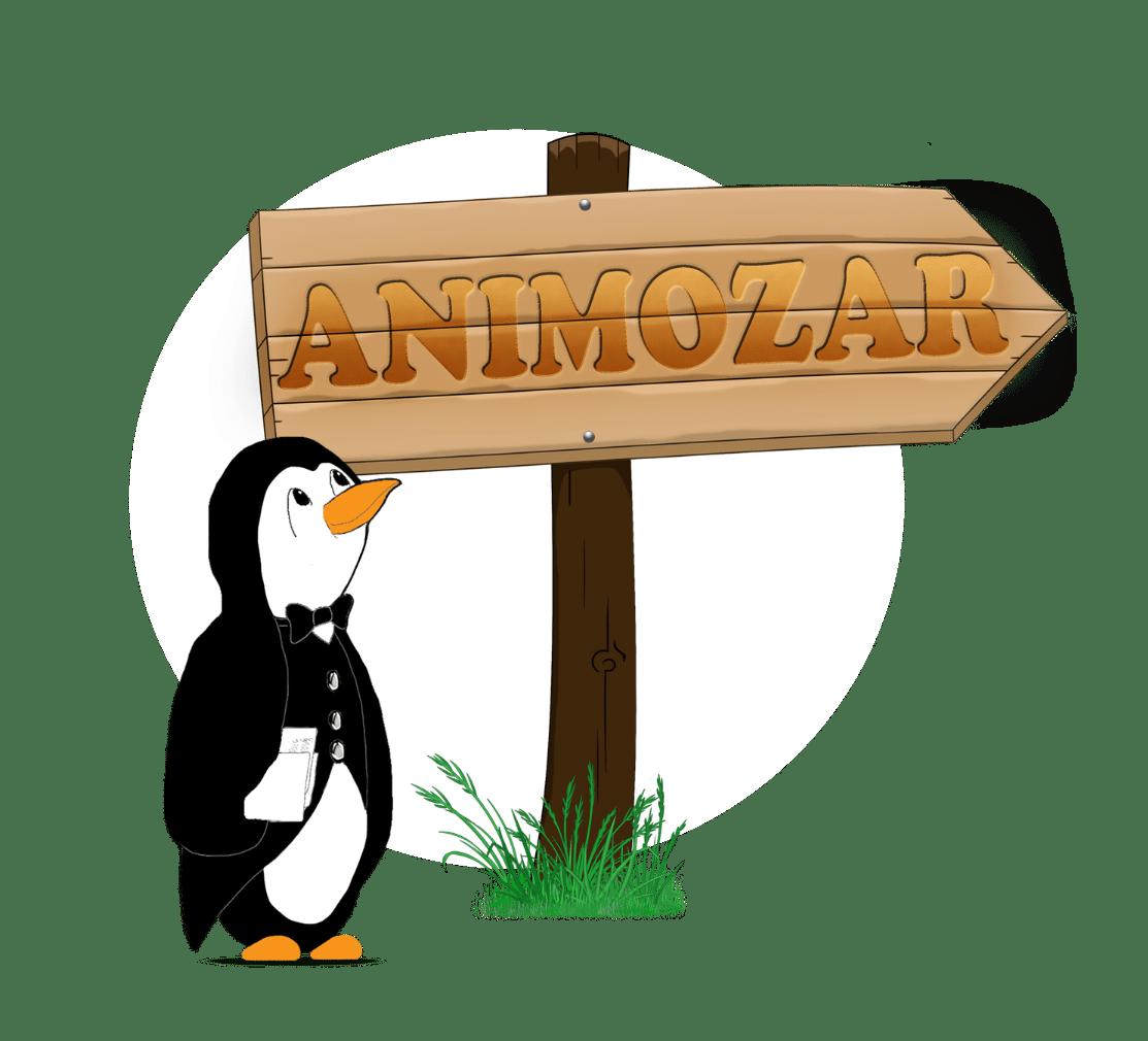 Pingouin bienvenue en Animozar
